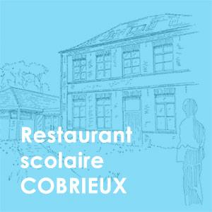 cobrieux_bleu